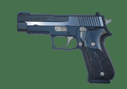 SIG SAUER 45ACP P220 EQUINOX handgun