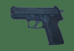 SIG SAUER 9MM P229 handgun