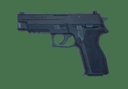 SIG SAUER 9MM P226 handgun